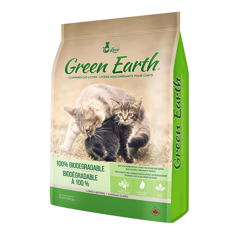 Arena Biodegradable Green: Amazon.es: Hogar