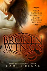 Broken Wings (Hidden Wings Series Book Two) Kindle Edition