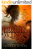 Broken Wings (Hidden Wings Series Book Two)