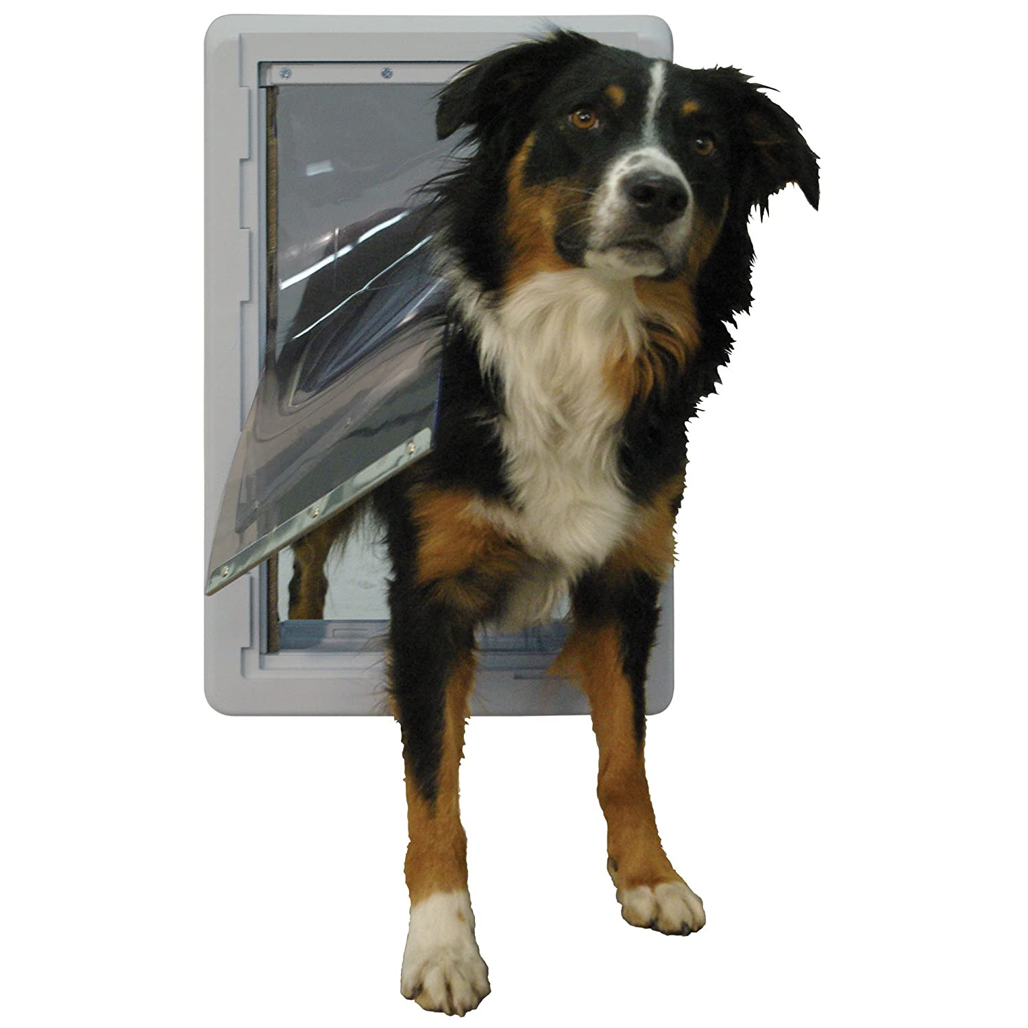 Amazon Ideal Pet Products Designer Series Ruff Weather Pet