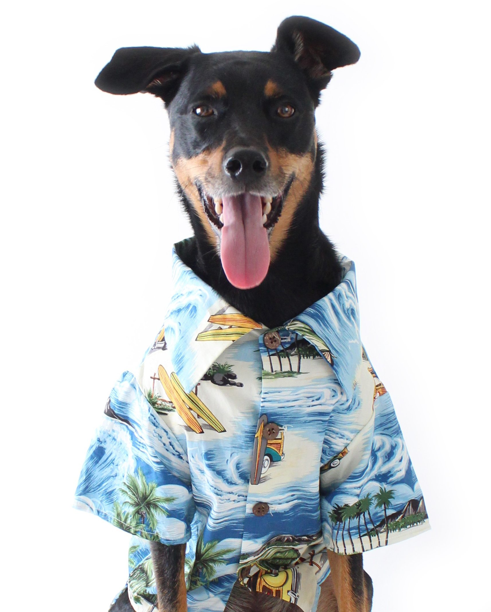Dog Threads Dog Hawaiian Shirt Longboard BBQ Shirt (S (12-20lbs)) Hawaiian Print Dog Shirt Blue