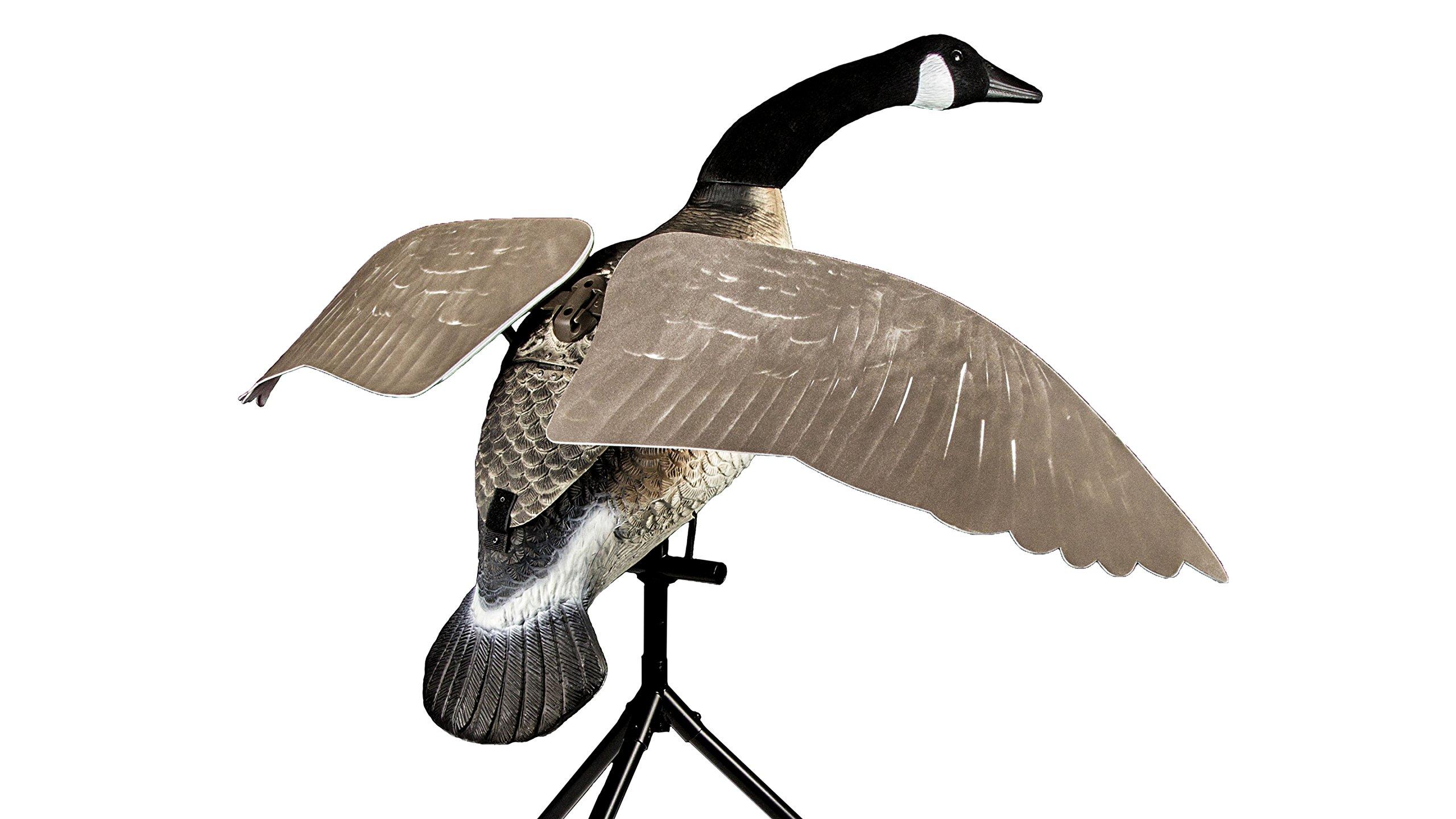 Lucky Duck Lucky Flapper Canada Goose