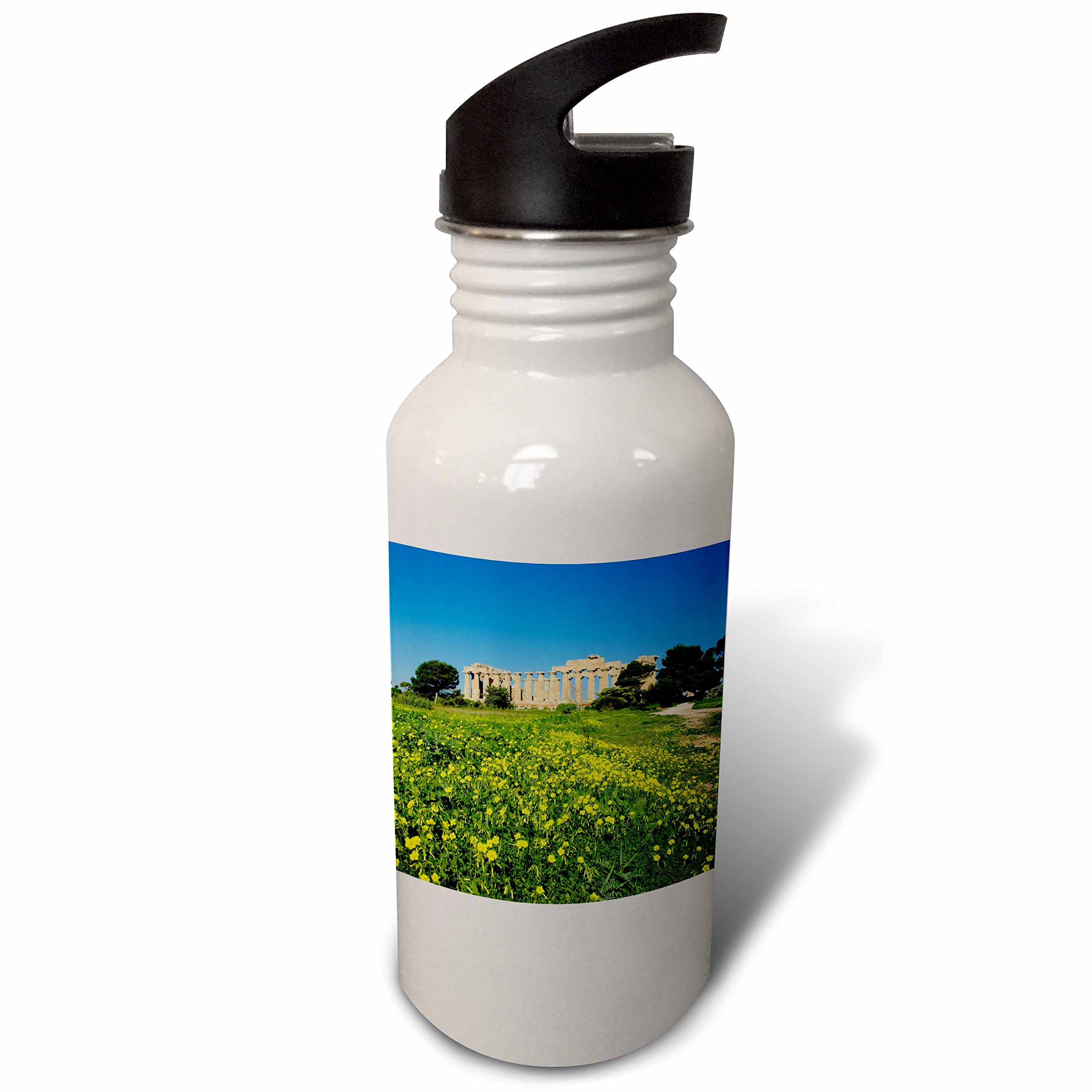 3dRose Danita Delimont - Ruins - Italy, Sicily, old city of Selinunte, ruins of the Greek temple - Flip Straw 21oz Water Bottle (wb_277617_2) by 3dRose
