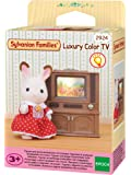 LUXURY COLOR TV - SPEELGOED