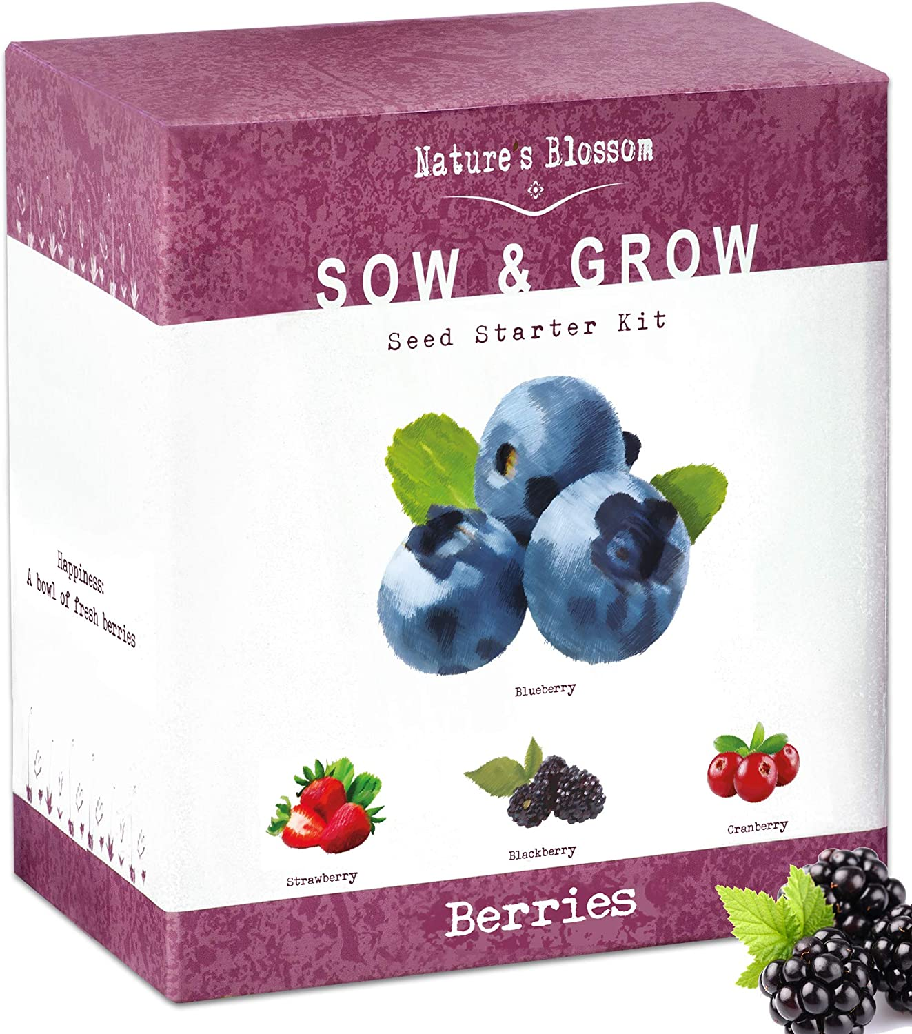 Amazon Com Nature S Blossom Exotic Berries Seed Starter Kits A