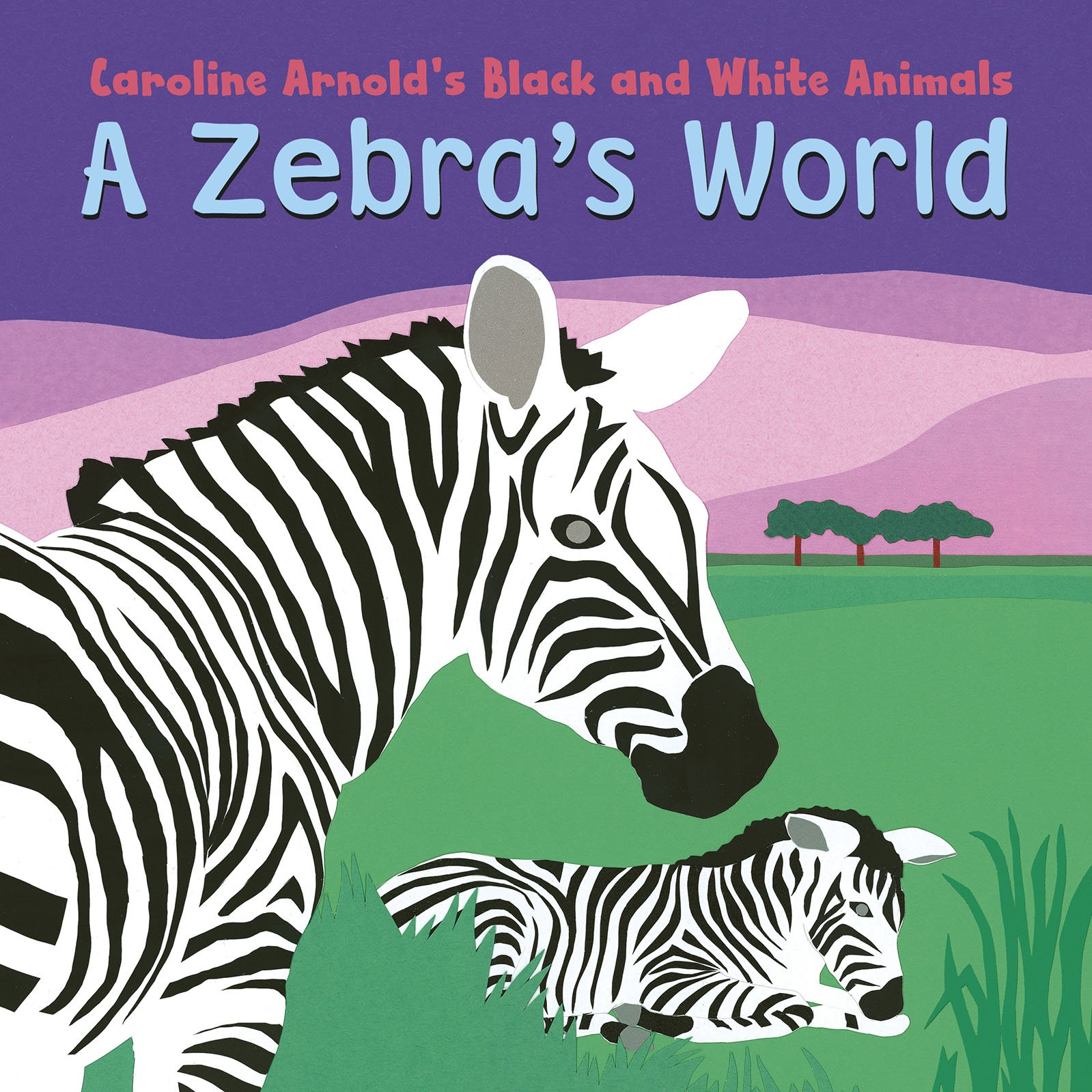 Download A Zebra's World (Caroline Arnold's Black and White Animals) pdf epub