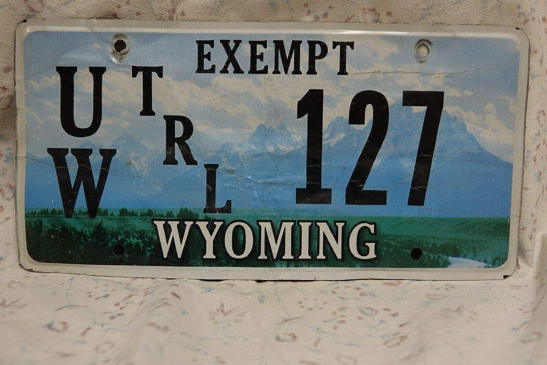 TammieLove Wyoming Placa de matrícula de Caballo y Jinete Remolque, Universidad, camión, Coche, Bronco, 15 x 12 Pulgadas