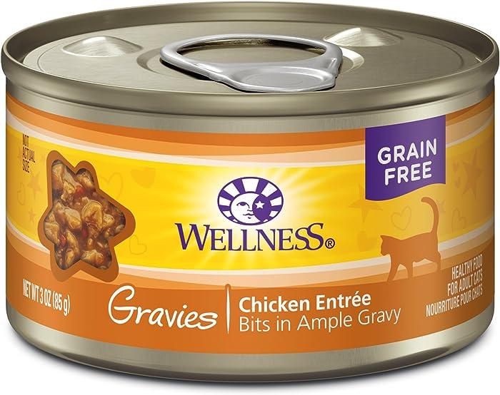 The Best Wellnes Complete Health Cat Food