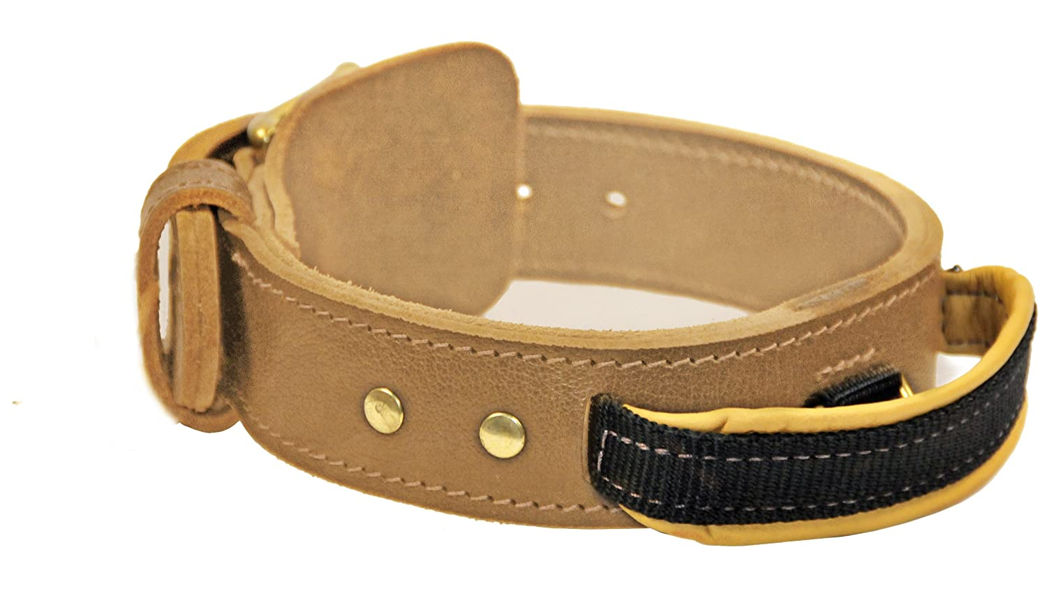 Dean and Tyler Simplicity+ , Dog Collar with Handle and Solid Brass Hardware Tan Size 20-Inch by 1-3 4-Inch Fits Neck 18-Inch to 22-Inch