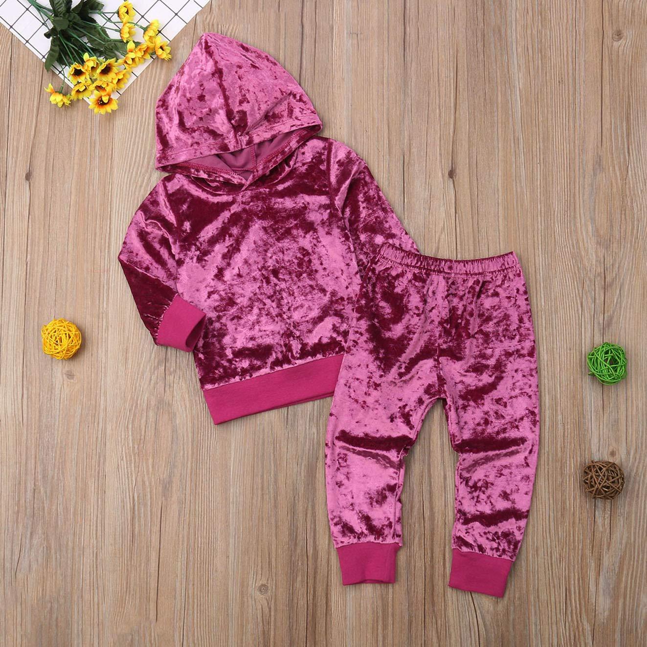 Toddler Baby Girls Velvet Long Sleeve Hoodie Top+Pants Outfits