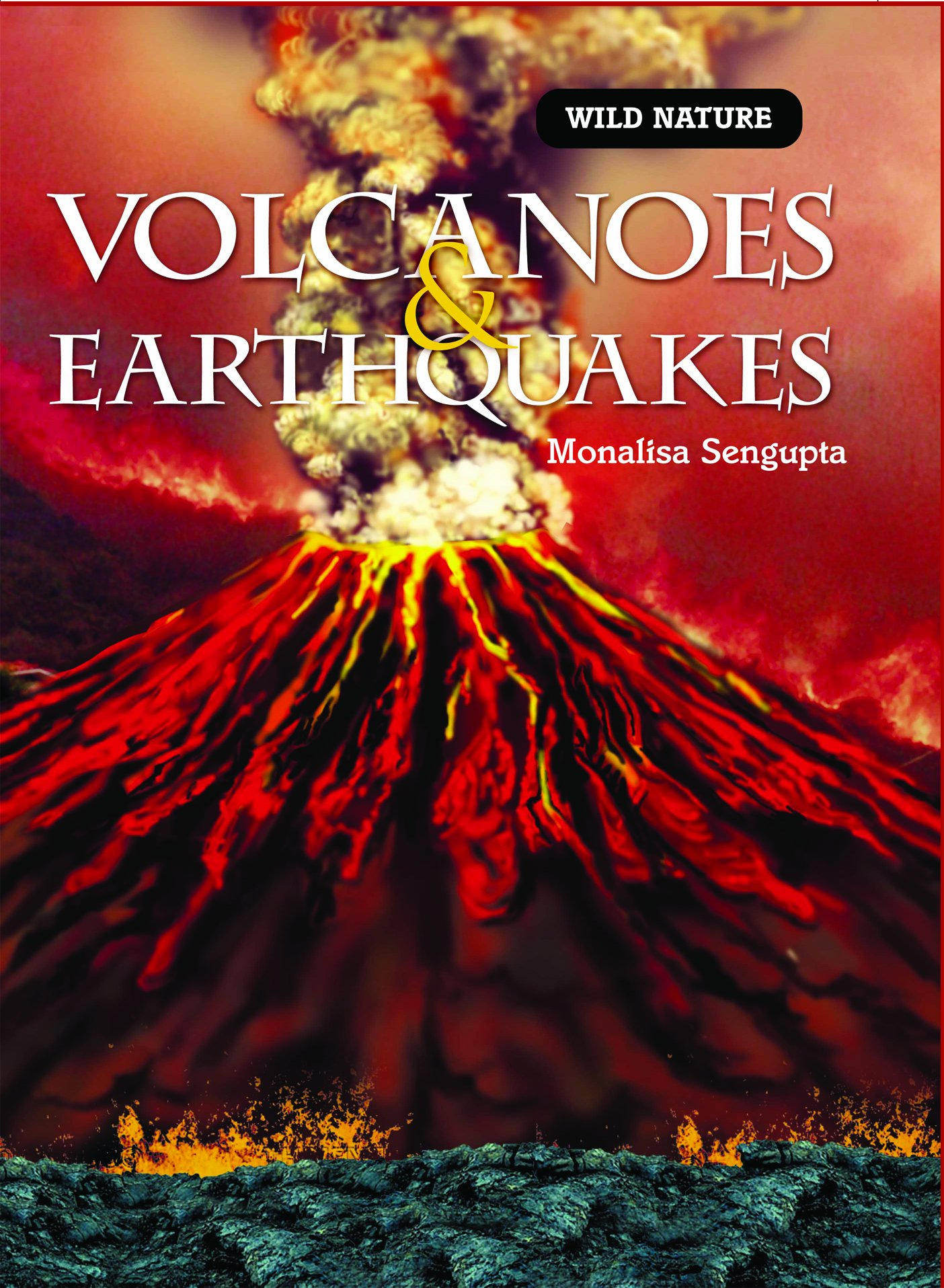 Volcanoes and Earthquakes (Wild Nature) ebook
