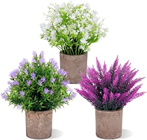 """FUNARTY 3 Packs Fake Potted Plants Artificial Small Flower 10"""" Plastic Lavender Pot Clematis Florida for Garden Lawn Patio Balcony Office Bathroom Home Decoration (White Green Purple)"""