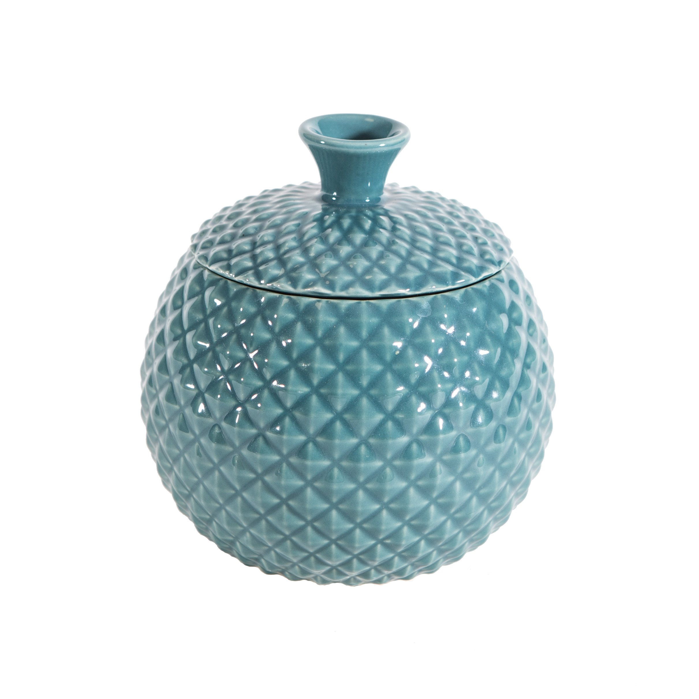 Fruit Fly Catcher Trap for Home Kitchens, Natural Pest Control, Chemical free, Nontoxic, Decorative, Effective, Kid and Pet Friendly (Turquoise)