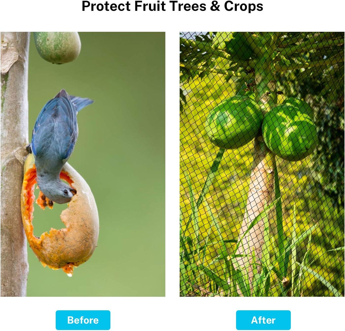 Sunkorto Reti per Uccelli Reti Anti Uccelli Reti Protettive Riutilizzabile 4x10M//2.3x19.8M//7.6x15.2M Rete da Giardinoper Frutti Colture Piante Maglia Quadrata da 1,8 cm