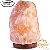 GEOFOSSILS® Lampada di Sale dell Himalaya de 7-10kg migliore qualità