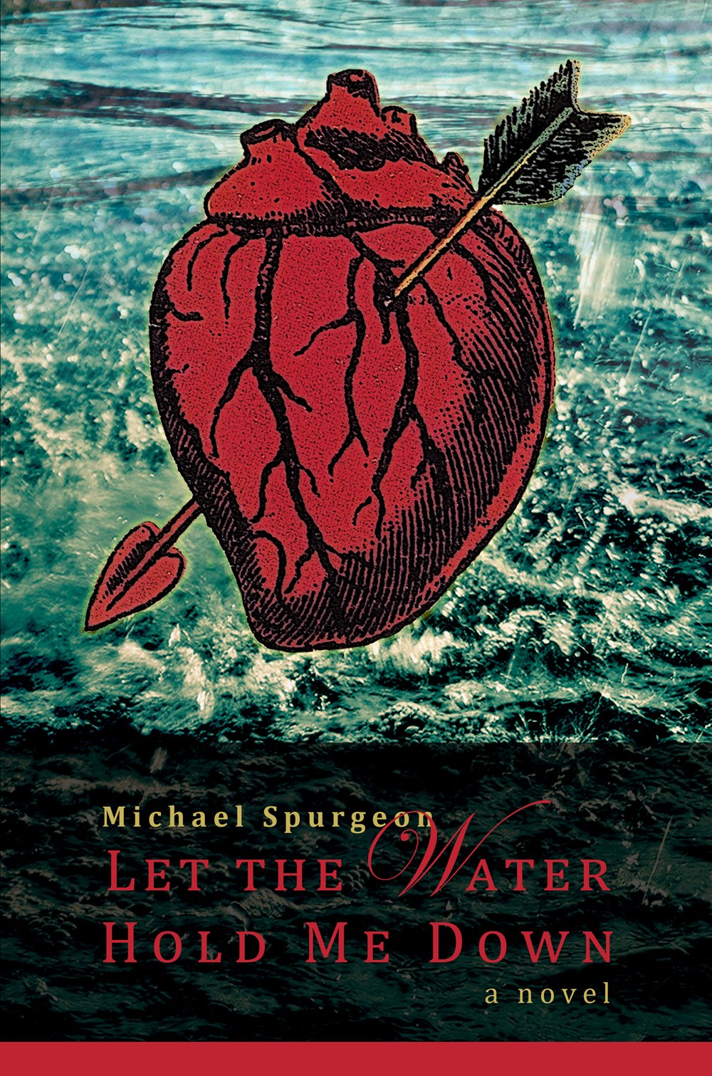 Read Online Let the Water Hold Me Down pdf