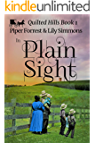 In Plain Sight (Quilted Hills Book 1)