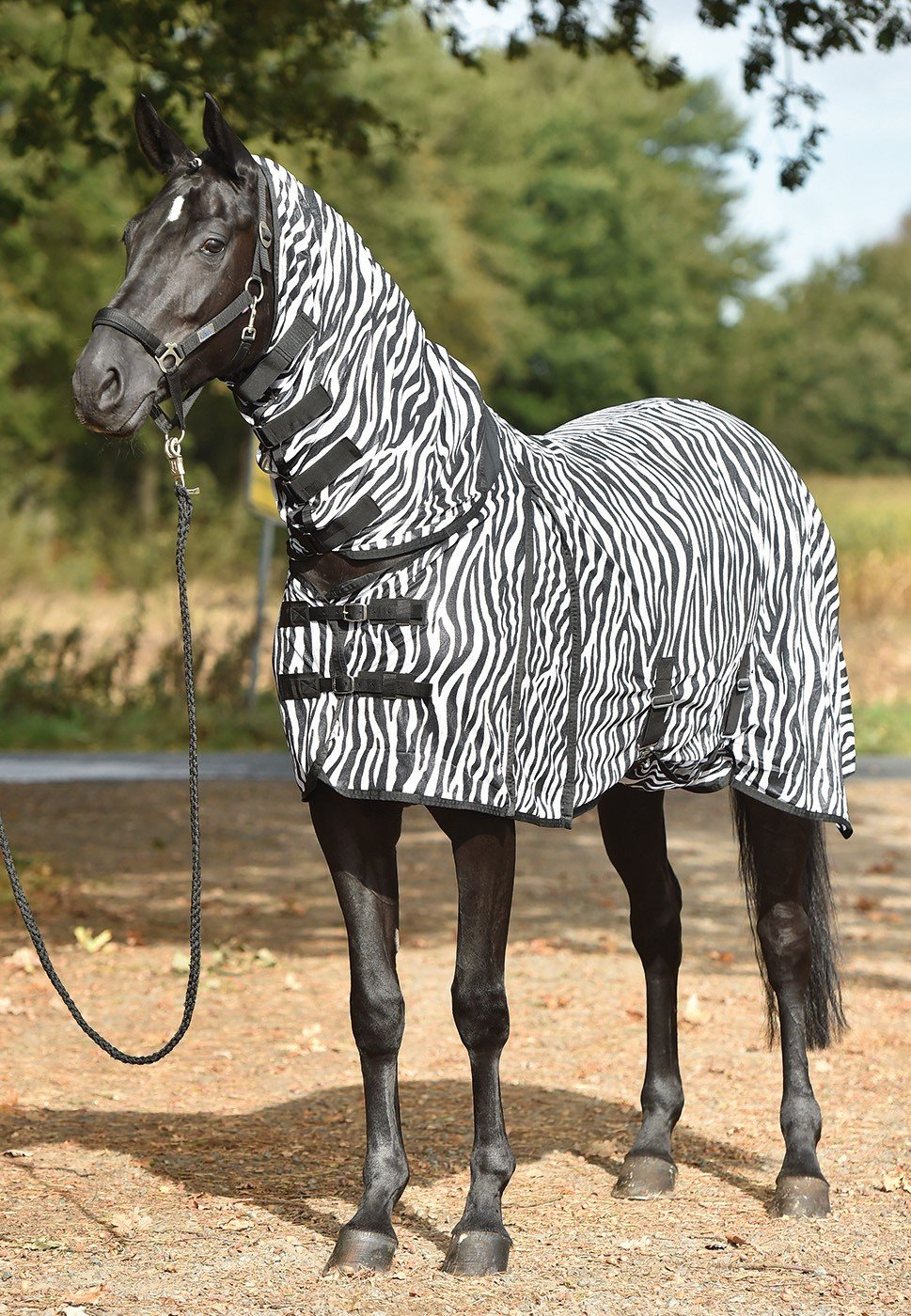 Busse Paddock-Fliegendecke Comfort Zebra