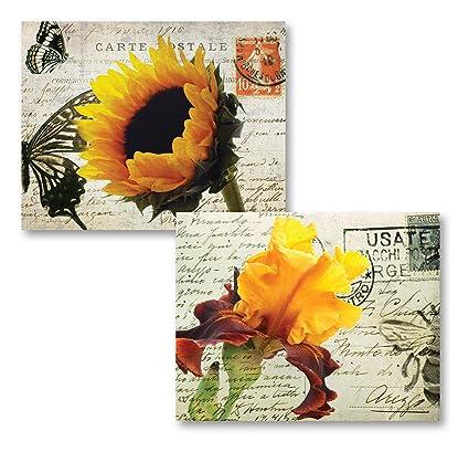 Decoration Carte Postale.Amazon Com Carte Postale Popular Gorgeous Sunflower And