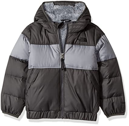 8be47635d The North Face Little Boys' Moondoggy 2.0 Down Jacket (Sizes 4 - 7 ...