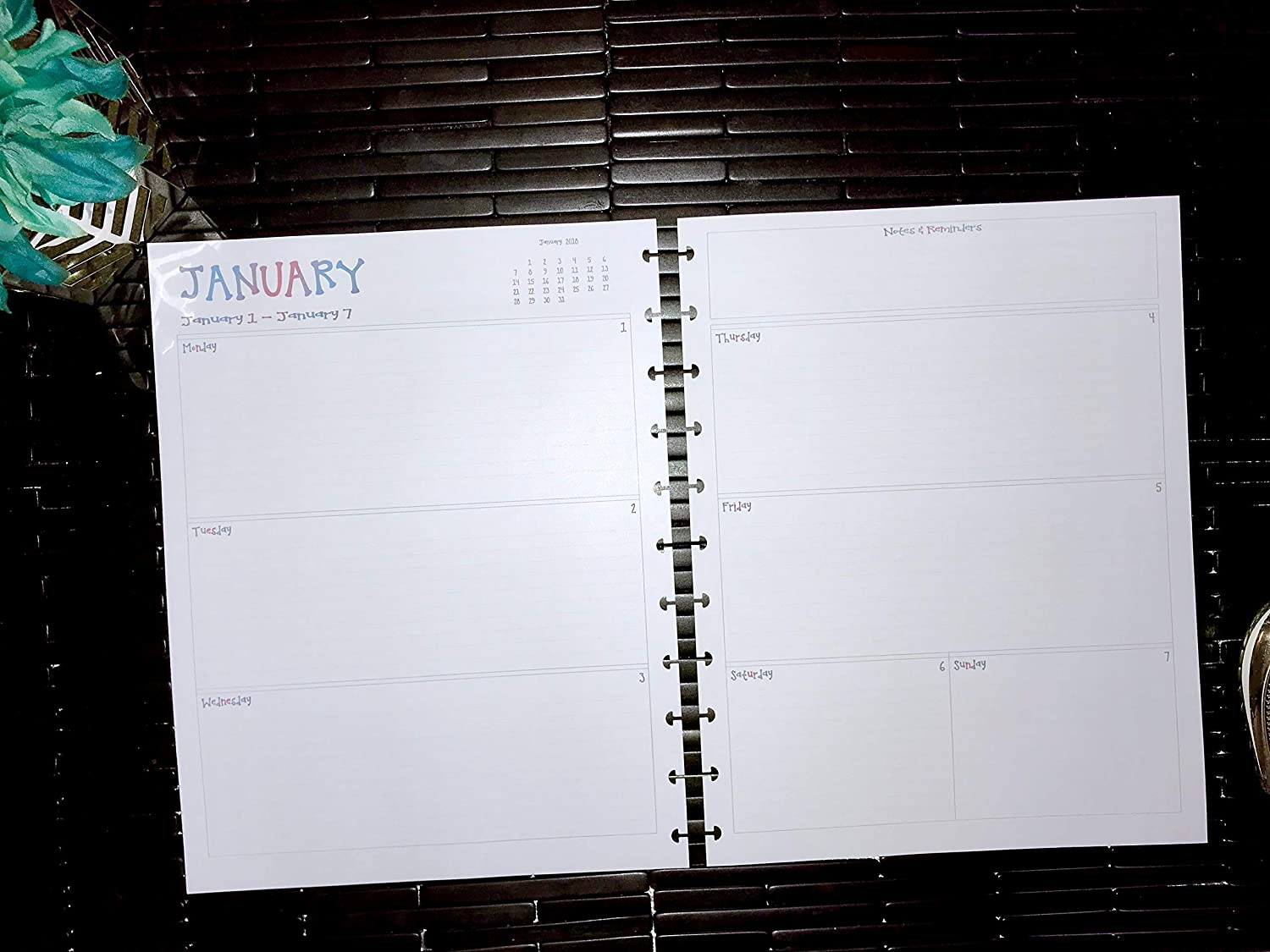 2018 2019 2020 A4 Daily Calendar for Discbound Planners Martha Stewart and ALL Letter Size 8.5 x 11 Arc Planner Inserts Only TUL Fits Levenger