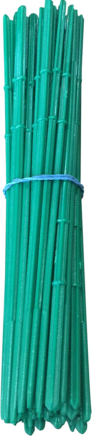 Green Fruit Kebab Decoration for Party Food Premium Cocktail Picks Kool Products Pack of 100 Skewers 8.66 Inch with Ribs Dessert Prawn Burger Sausage Barbecue Stick Appetizer