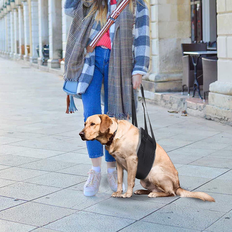 Soporte para Perros Reflectante Port/átil Arn/és Perro de Rehabilitaci/ón Plegable con Correa de Mano Ajustable y Asa Acolchada para Perros con Piernas Traseras D/ébiles XL, Rojo