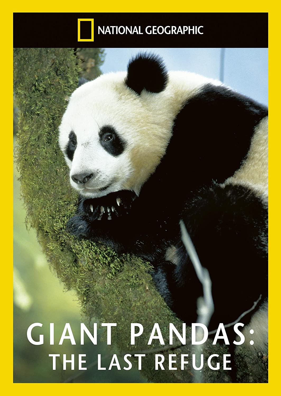 national geographic giant pandas the last refuge dvd amazon co