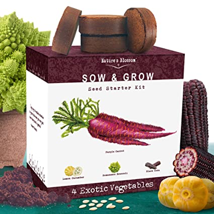 Natures Blossom Exotic Vegetables Growing Kit. 4 Unique Plants To Grow From Seed. Beginner Gardeners Starter Set To Start Your Own Unusual Home Veg ...