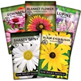 Sow Right Seeds - Perennial Flower Garden Collection for Planting - Russell Lupine, Black-Eyed Susan, Shasta Daisy…