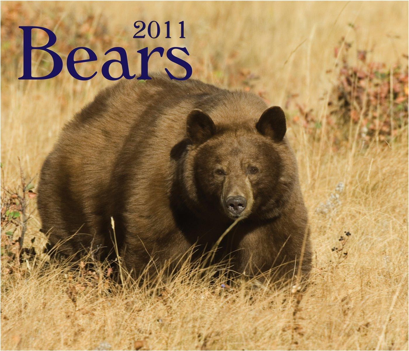 Download Bears 2011 PDF