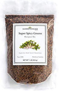 Super Spicy Greens Microgreen Seed Mix | Seeds for Planting | Contains Garden Cress Seeds, Radish, Mustard, Turnip & Arugula Microgreen Seeds | Non GMO Heirloom Seeds | 1 LB | Rainbow Heirloom Seed Co