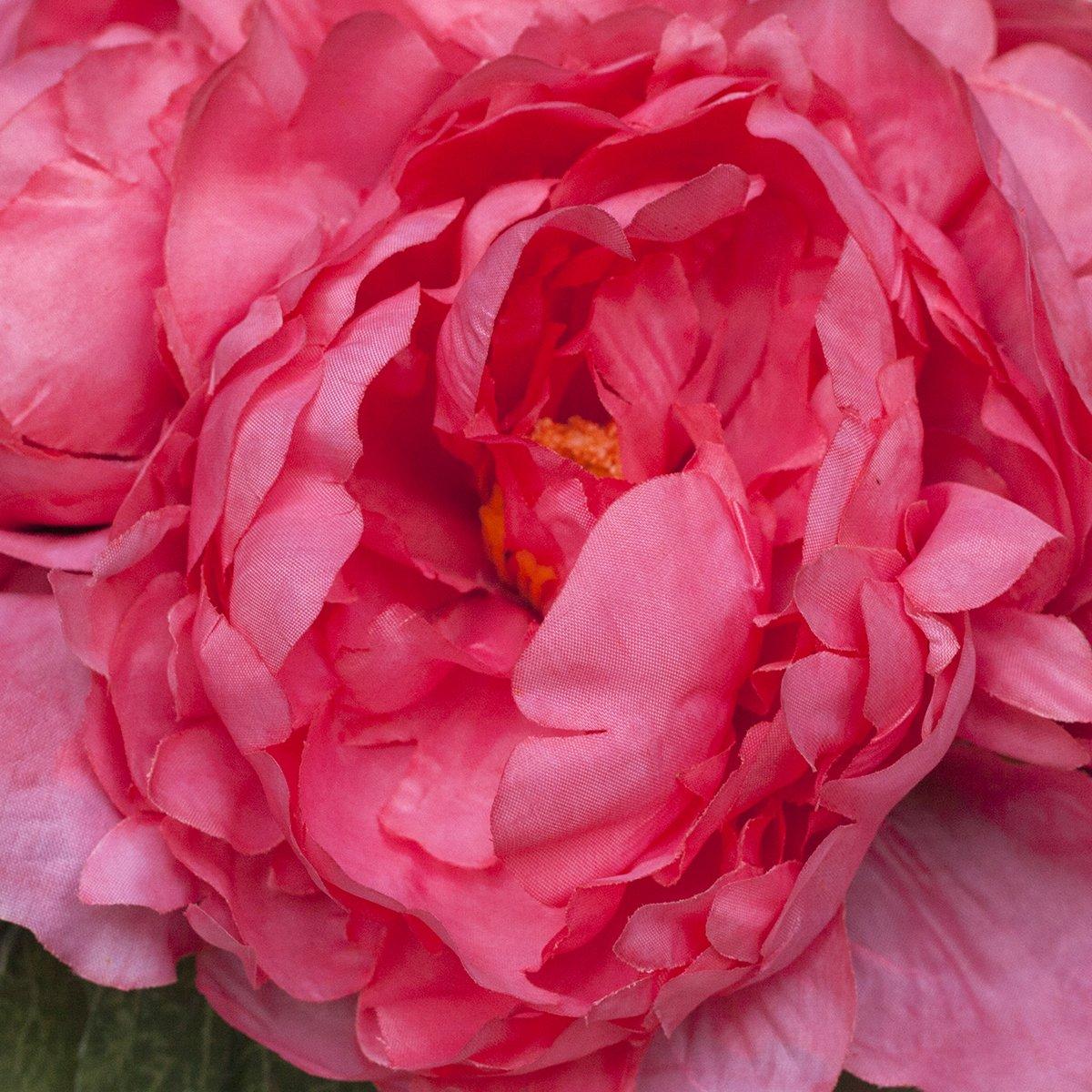 Amazon Silk Peonies Bouquet Coral Home Kitchen