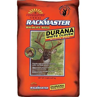 Pennington Rackmaster Durana Clover 5 Lb : Grass Plants : Garden & Outdoor