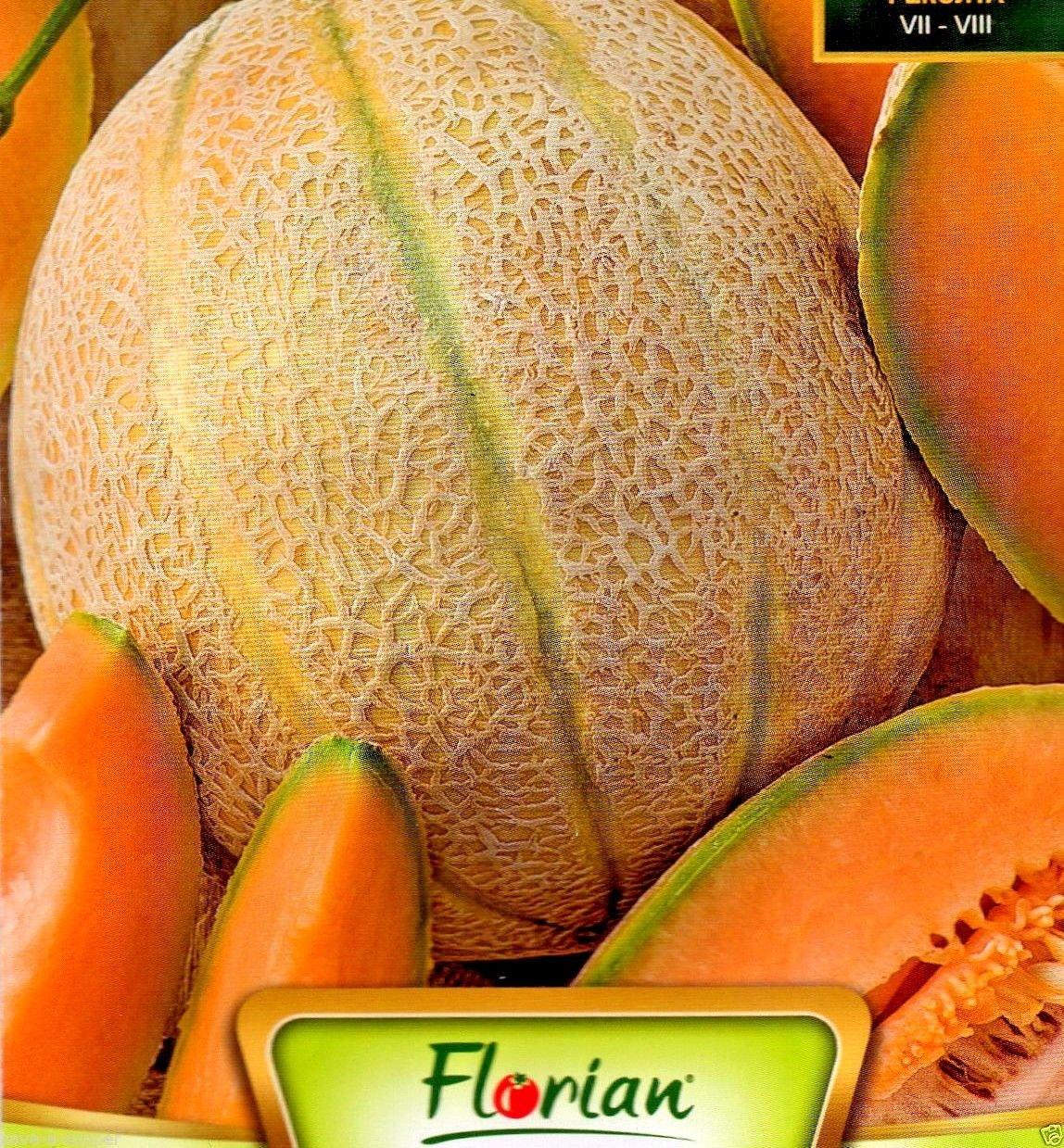 ITALIAN VARIETY MELON RETATO DEGLI ORTOLANI 60 HIGH QUALITY FRUIT SEEDS //268