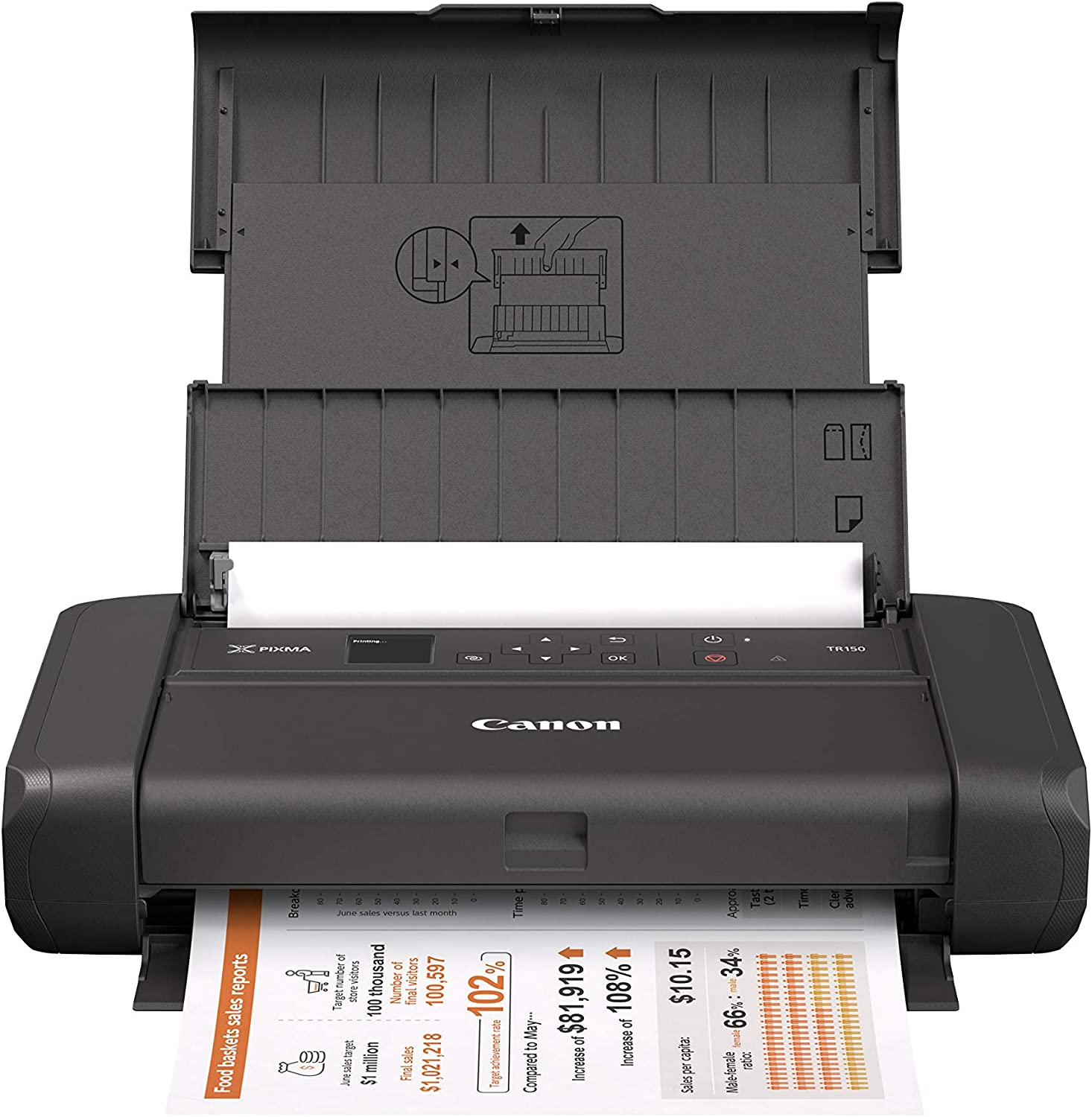 Canon Pixma TR150 Wireless Mobile Printer with Air Print