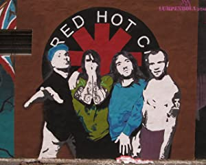 Red Hot Chili Peppers Band Concert Poster Home Decor #5 16x20 Inches