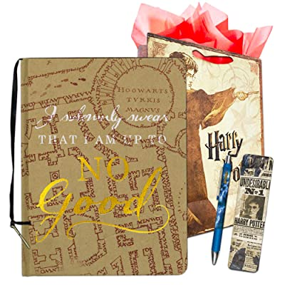 InkWorks Harry Potter Diary and Pen Set -- Bundle Includes Premium Harry Potter Journal, Ballpoint Click Pen, Bookmark and Harry Potter Gift Bag (Harry Potter Merchandise): Toys & Games