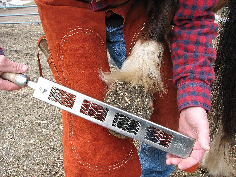 Elija fino AGRESIVO Cody James Dymondback Rasp with Handle El mejor archivo para recortar un caballo HOOF medio o agresivo