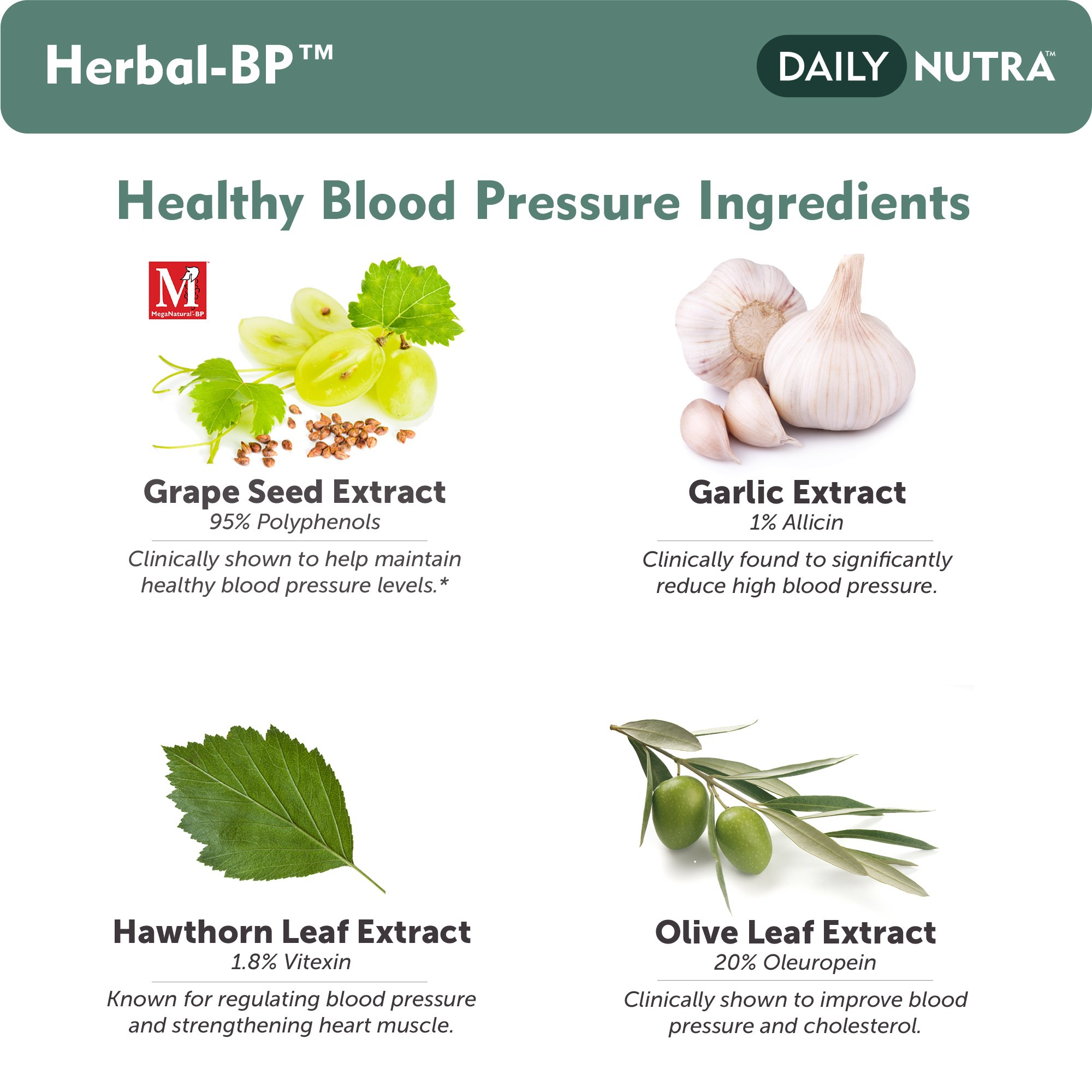 Herbal-BP Natural Blood Pressure Support with Stress Management - Medical Grade Botanical Extracts - Safe, Long-Term Support (3-Pack) by DailyNutra (Image #3)