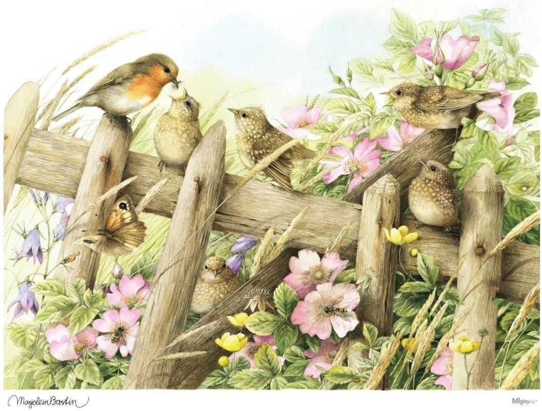 Amazon.com: MightyPrint Marjolein Bastin (Baby Birds in Spring ...