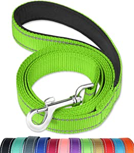 FunTags 6FT /4FT Reflective Nylon Dog Leash with Soft Padded Handle for Training,Walking Lead for Large, Medium & Small Dogs