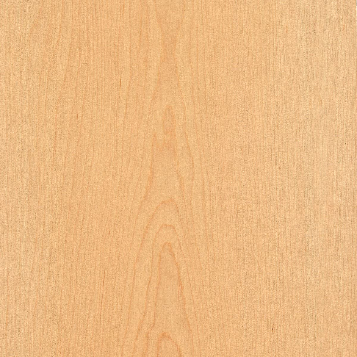 48 x 96 in Laminate Sheet Maple Wood Look Countertop Kitchen Bathroom Surface