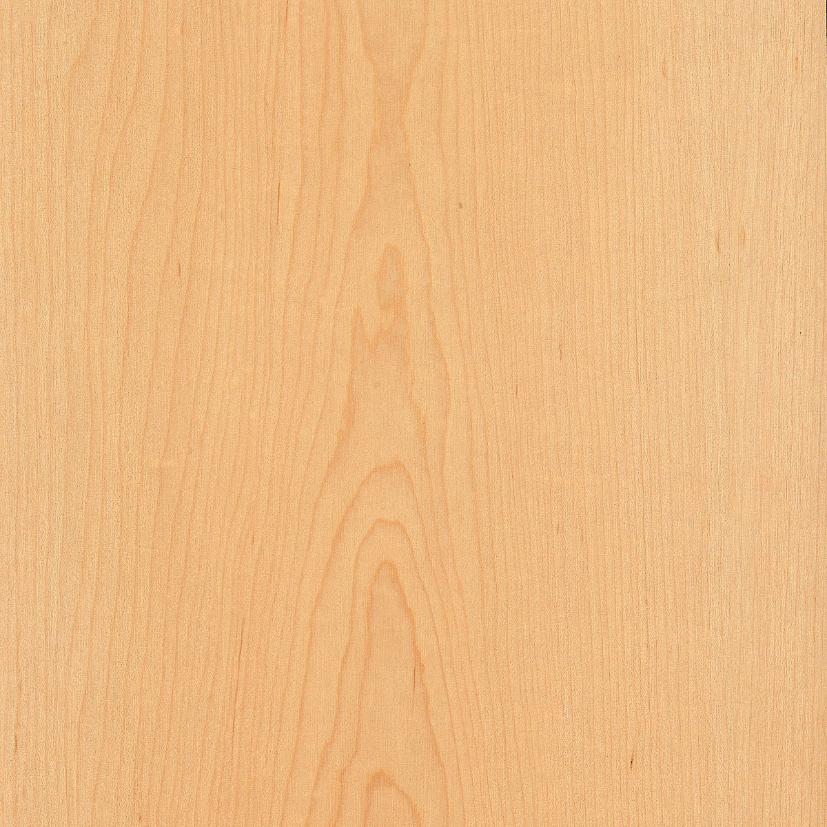Maple, White, Flat Cut, 24x96 10 mil (Paperback) Wood Veneer Sheet by Wood-All