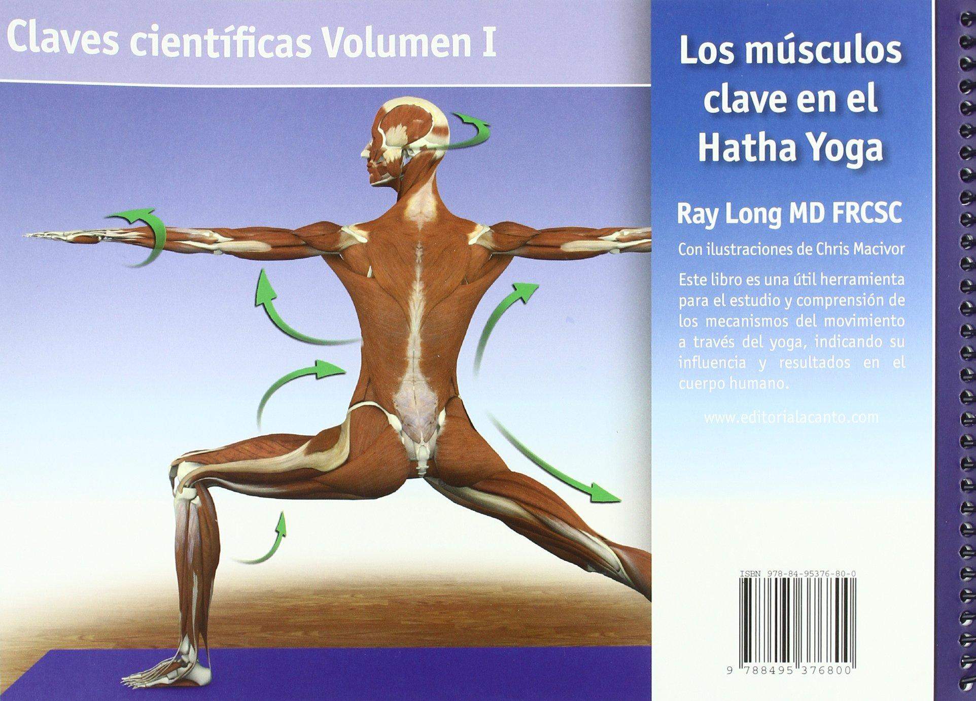 Los músculos clave en el hatha yoga: Ray Long: 9788495376800 ...
