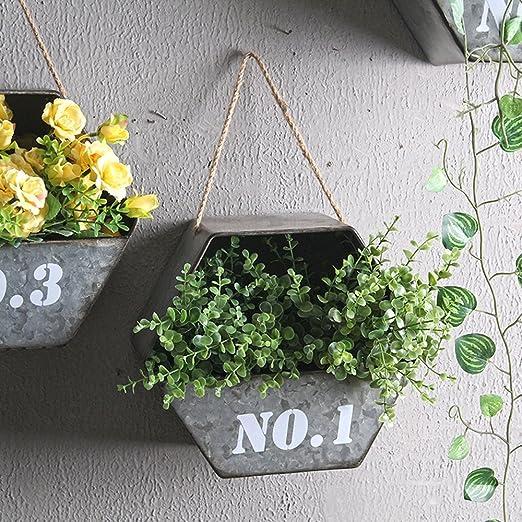 LHZG Cesta Hexagonal Creativa Hierro Decoración Pared Flores Macetas Colgante Jardín Vintage Colgante Maceta Soporte Decoración Hogar: Amazon.es: Jardín