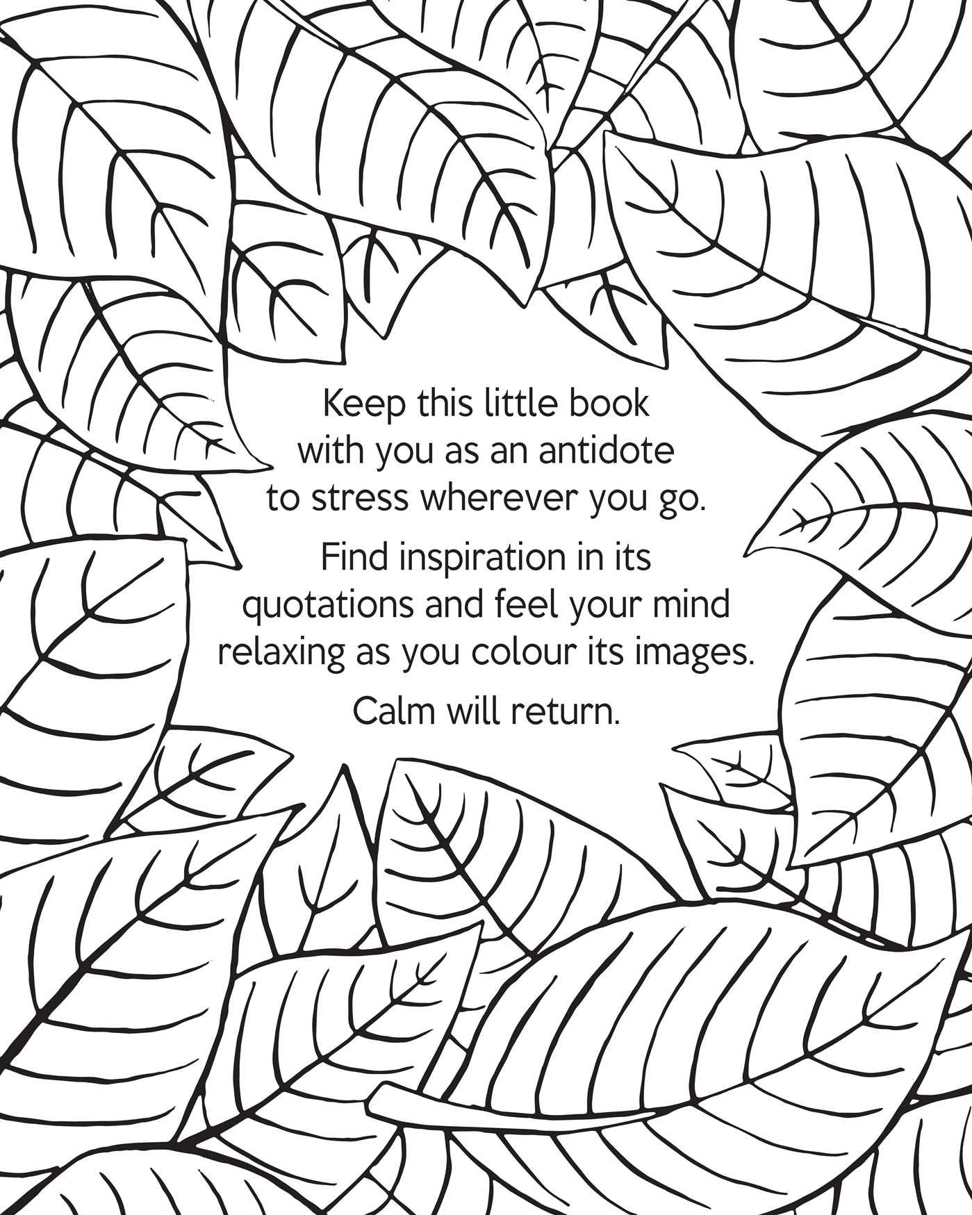 Amazon The Little Book of Calm Coloring Portable Relaxation