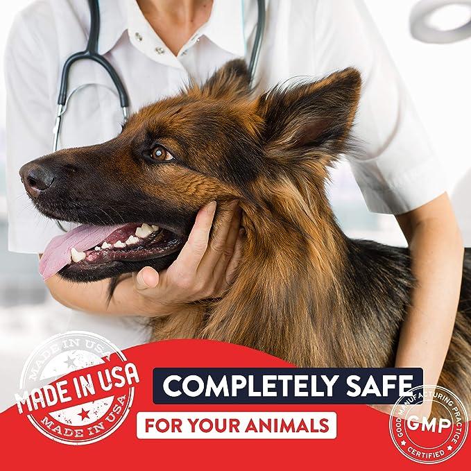 Amazon.com: Ciclos de vida geneflora para mascotas: Mascotas
