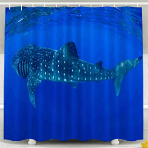 Shorping 78x72 Shower Curtain,Clear Shower Curtain, Whale Sharks Swimming in Blue Waters of Isla Mujeres Mexico Waterproof Decor Bathroom Set with Hooks