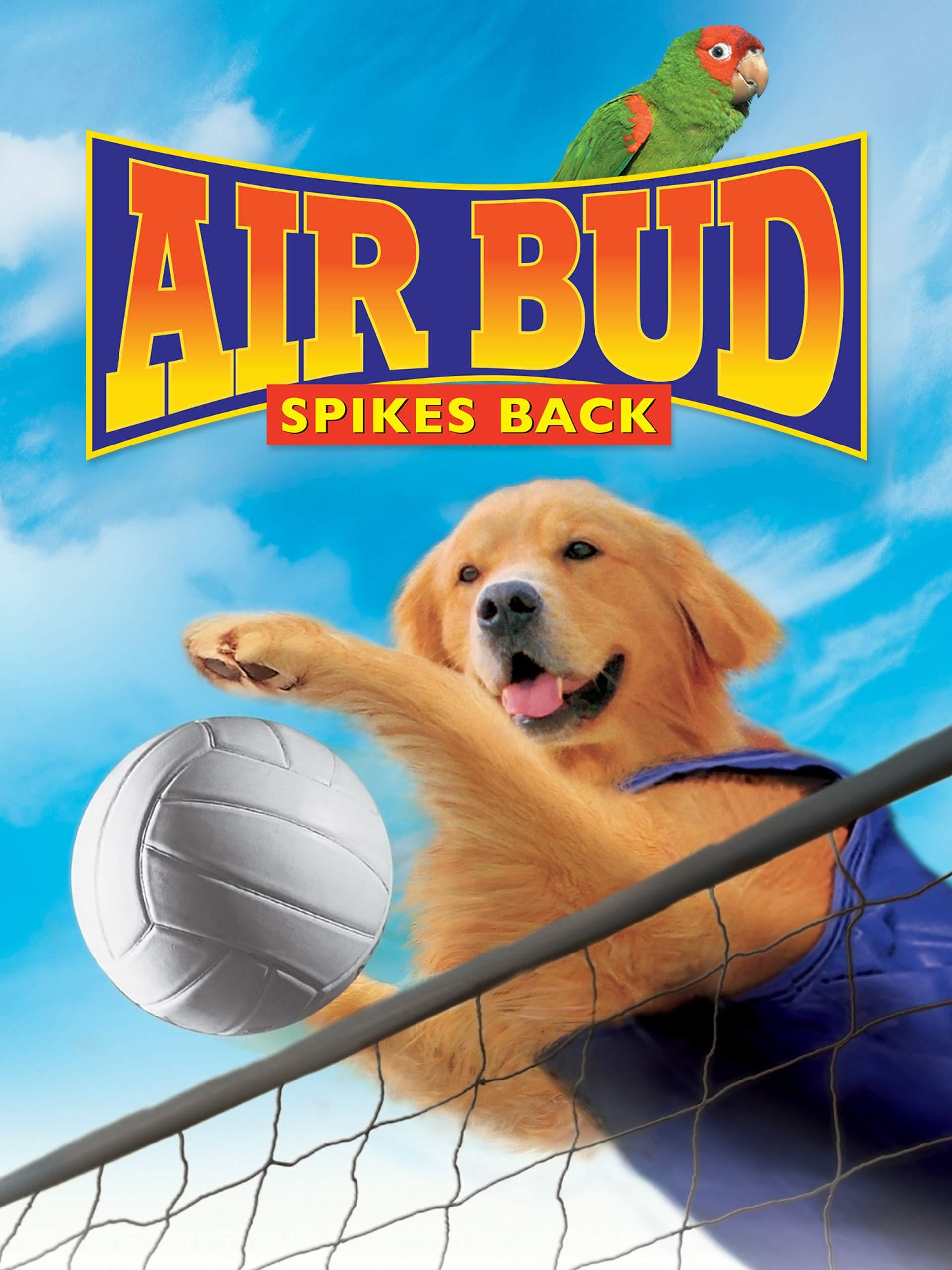 Air Bud Spikes Back